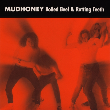 Mudhoney - Hate The Police